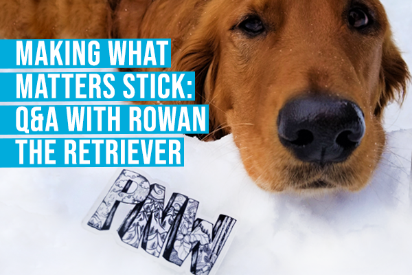 Rowan the Retriever