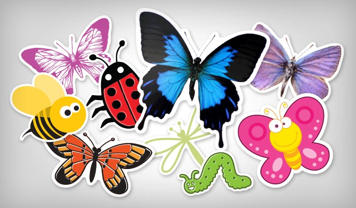 Butterfly & Insect Stickers